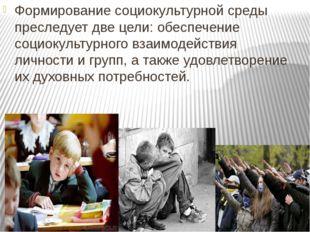 Формирование социокультурной среды преследует две цели: обеспечение социокуль