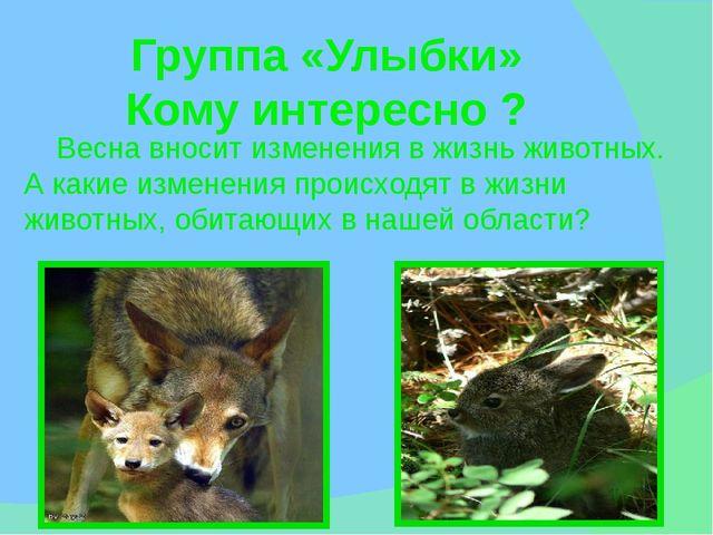 Весна вносит изменения в жизнь животных. А какие изменения происходят в жизн...