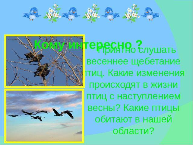 Приятно слушать весеннее щебетание птиц. Какие изменения происходят в жизни...