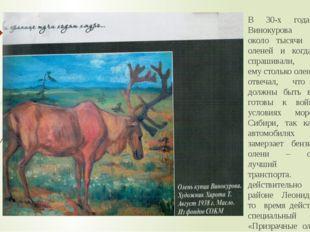 В 30-х годах у Винокурова было около тысячи голов оленей и когда его спрашива