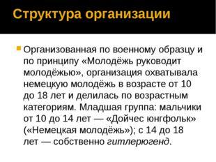 Структура организации Организованная по военному образцу и по принципу «Молод