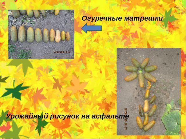 Огуречные матрешки Урожайный рисунок на асфальте