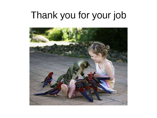Thank you for your job