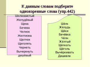 К данным словам подберите однокоренные слова (упр.442) Шёлк Жёлудь Щёки Бечё