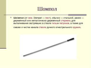 Шомпол Шо́мпол(отнем.Stempel—пест), обычно— стальной, ранее— деревянны