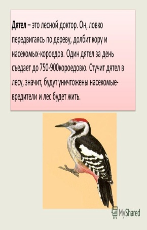 hello_html_1d708bcb.jpg