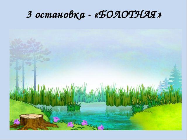 3 остановка - «БОЛОТНАЯ»