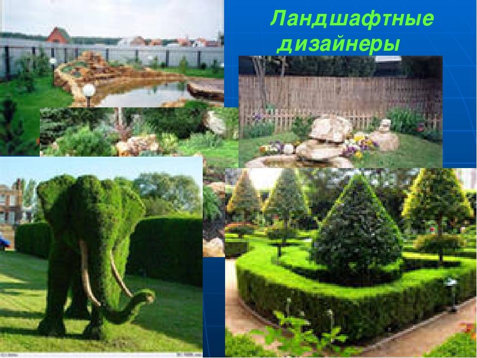 Работа ландшафтный дизайн в москве