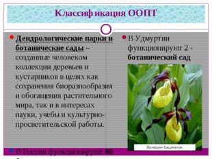 Классификация ООПТ Дендрологические парки и ботанические сады– созданные чел