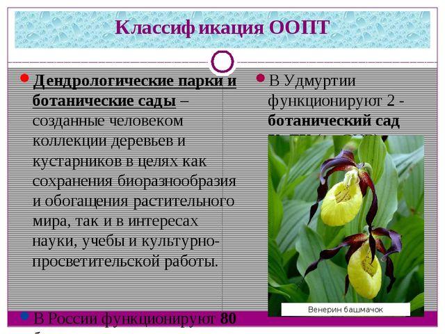 Классификация ООПТ Дендрологические парки и ботанические сады– созданные чел...