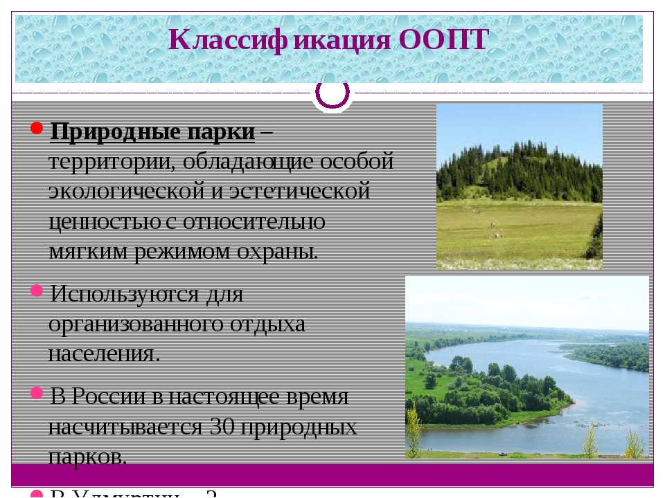 Классификация ООПТ Природные парки– территории, обладающие особой экологичес...