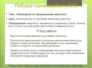 Лабораторная работа №5 Тема: «Наблюдение за передвижением животных» Цель: поз