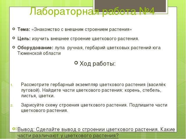 Лабораторная работа №4 Тема: «Знакомство с внешним строением растения» Цель:...