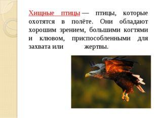 Хищные птицы— птицы, которые охотятся в полёте. Они обладают хорошим зрение