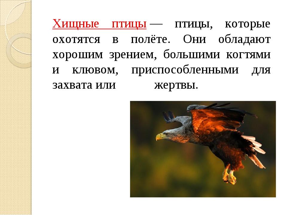 Хищные птицы— птицы, которые охотятся в полёте. Они обладают хорошим зрение...