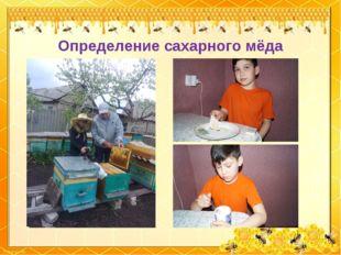 Определение сахарного мёда