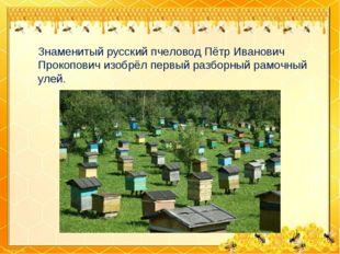Знаменитый русский пчеловод Пётр Иванович Прокопович изобрёл первый разборный