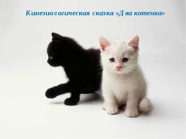 Кинезиологическая сказка «Два котенка»