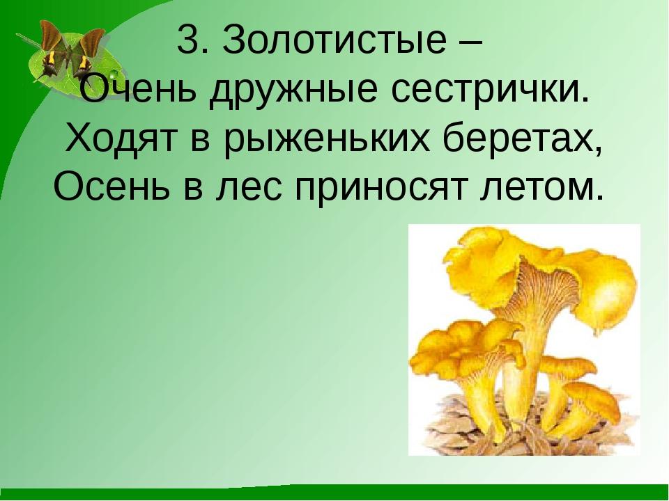 3. Золотистые – Очень дружные сестрички. Ходят в рыженьких беретах, Осень в л...