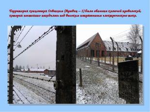 Территория концлагеря Освенцим (Аушвиц – 1) была обнесена колючей проволокой,