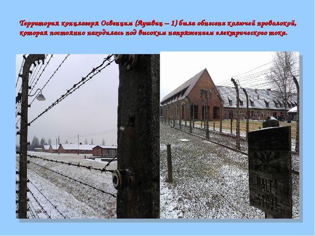 Территория концлагеря Освенцим (Аушвиц – 1) была обнесена колючей проволокой,...