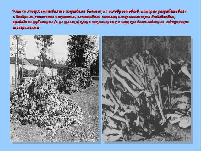 Узники лагеря становились жертвами больных на голову эсэсовцев, которые разра...