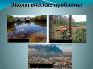 Экологические проблемы загрязнение воды уничтожение лесов загрязнение воздуха