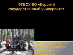 Выполнил студент 1 курса: Колесов А.А. Руководитель: Захаров В.А. ФГБОУ ВО «К
