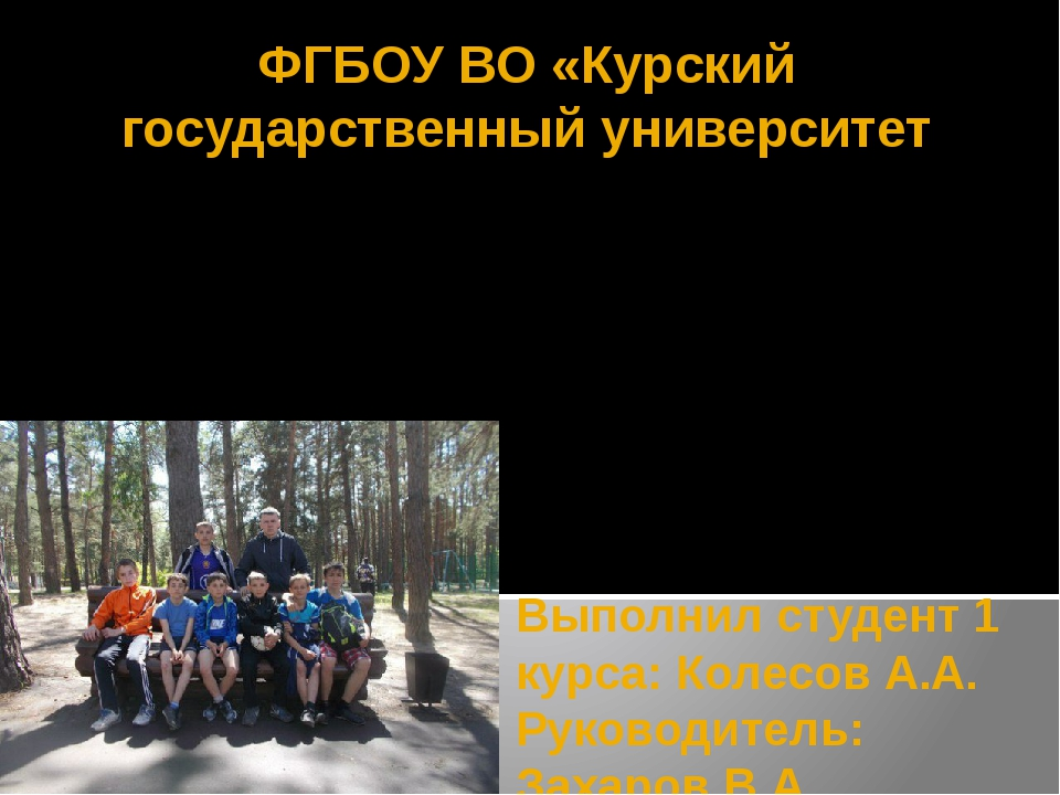 Выполнил студент 1 курса: Колесов А.А. Руководитель: Захаров В.А. ФГБОУ ВО «К...