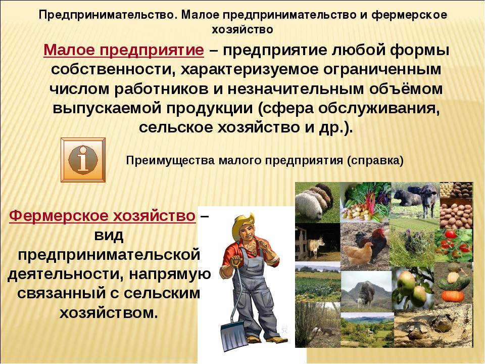 Предпринимательство. Малое предпринимательство и фермерское хозяйство Малое п...