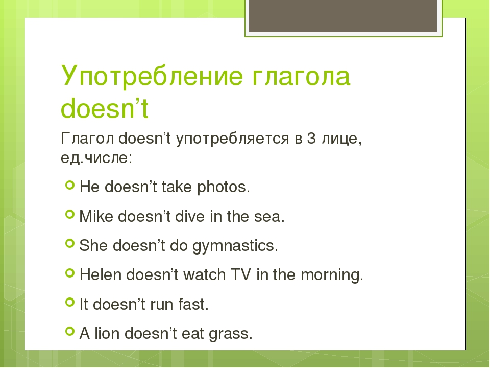 Употребление глагола doesn't Глагол doesn't употребляется в 3 лице, ед.числе:...