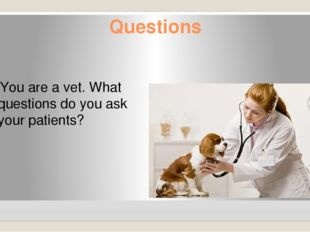 Questions You are a vet. What questions do you ask your patients?