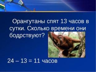 Орангутаны спят 13 часов в сутки. Сколько времени они бодрствуют? 24 – 13 =