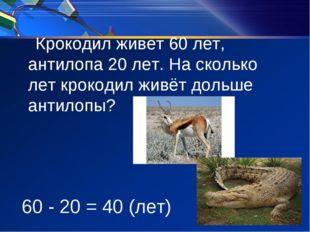Крокодил живет 60 лет, антилопа 20 лет. На сколько лет крокодил живёт дольше