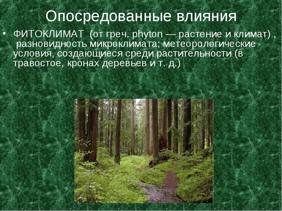 Опосредованные влияния ФИТОКЛИМАТ (от греч. phyton — растение и климат) , раз...
