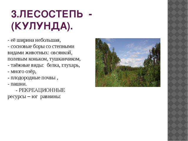 3.ЛЕСОСТЕПЬ - (КУЛУНДА). - её ширина небольшая, - сосновые боры со степными в...