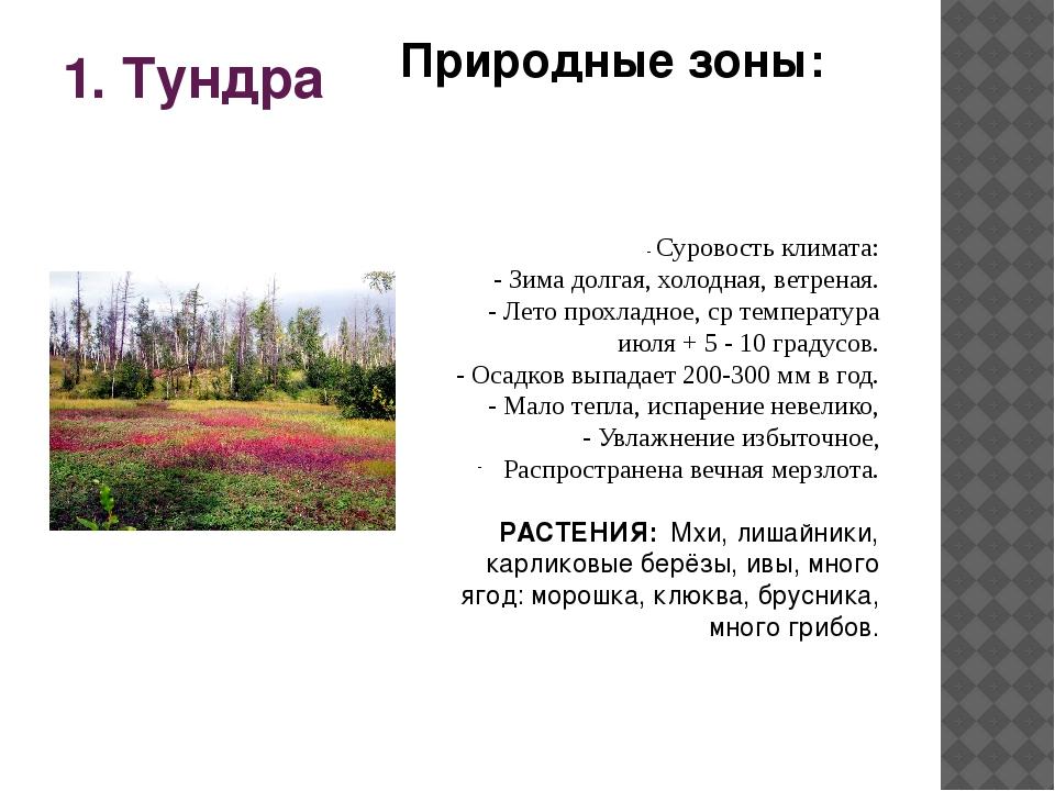 1. Тундра - Суровость климата: - Зима долгая, холодная, ветреная. - Лето прох...