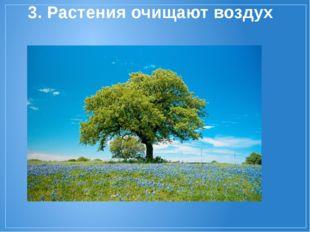 3. Растения очищают воздух