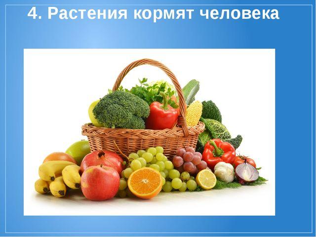 4. Растения кормят человека