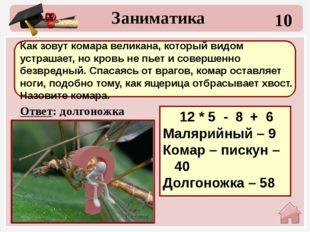 30 Ответ: 38+13+15=66 гепард Заниматика Какое животное самое быстрое? Выбери