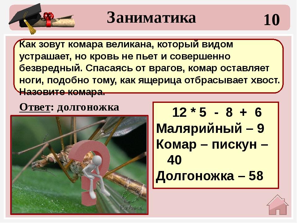 30 Ответ: 38+13+15=66 гепард Заниматика Какое животное самое быстрое? Выбери...