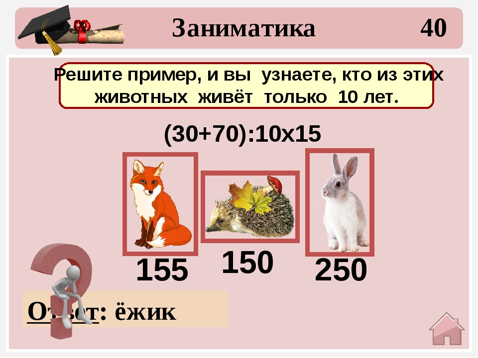 10 Математические цепочки Назовите правильный ответ 56 :7 х2 :4 х9 8 16 4 36