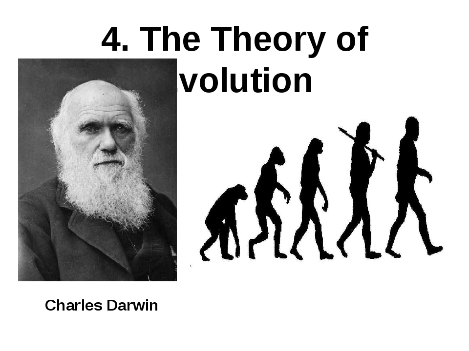 4. The Theory of Evolution Charles Darwin