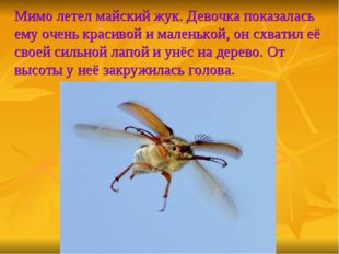 Мимо летел майский жук. Девочка показалась ему очень красивой и маленькой, он