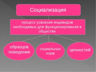 Социализация процесс усвоения индивидом необходимых для функционирования в об