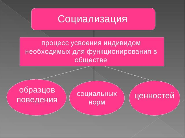 Социализация процесс усвоения индивидом необходимых для функционирования в об...