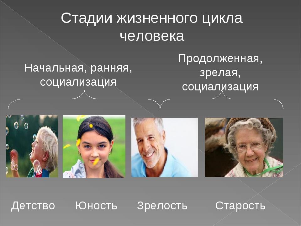 Стадии жизненного цикла человека Детство Юность Зрелость Старость Начальная,...