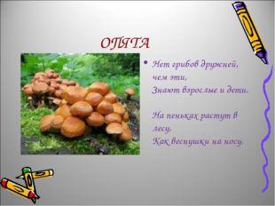 ОПЯТА Нет грибов дружней, чем эти, Знают взрослые и дети. На пеньках растут в