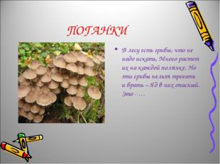 ПОГАНКИ В лесу есть грибы, что не надо искать, Много растет их на каждой поля