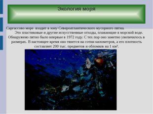 Экология моря Саргассово море входит в зону Североатлантического мусорного пя